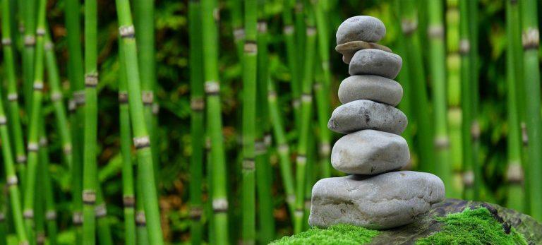 Zrównoważony rozwój firmy – na czym konkretnie polega?